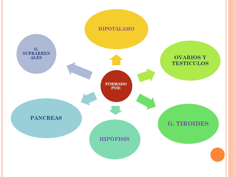 Hipertiroidismo, se debe al exceso de producción de tiroxina, la actividad metabólica se incrementa y el individuo adelgaza a pesar de comer mucho.