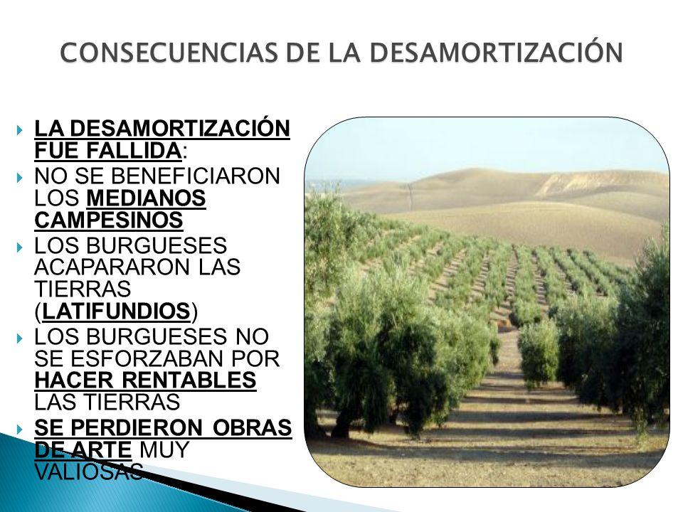 CONSECUENCIAS DE LA DESAMORTIZACIÓN LA DESAMORTIZACIÓN FUE FALLIDA: NO SE BENEFICIARON LOS MEDIANOS CAMPESINOS LOS BURGUESES ACAPARARON LAS TIERRAS (L