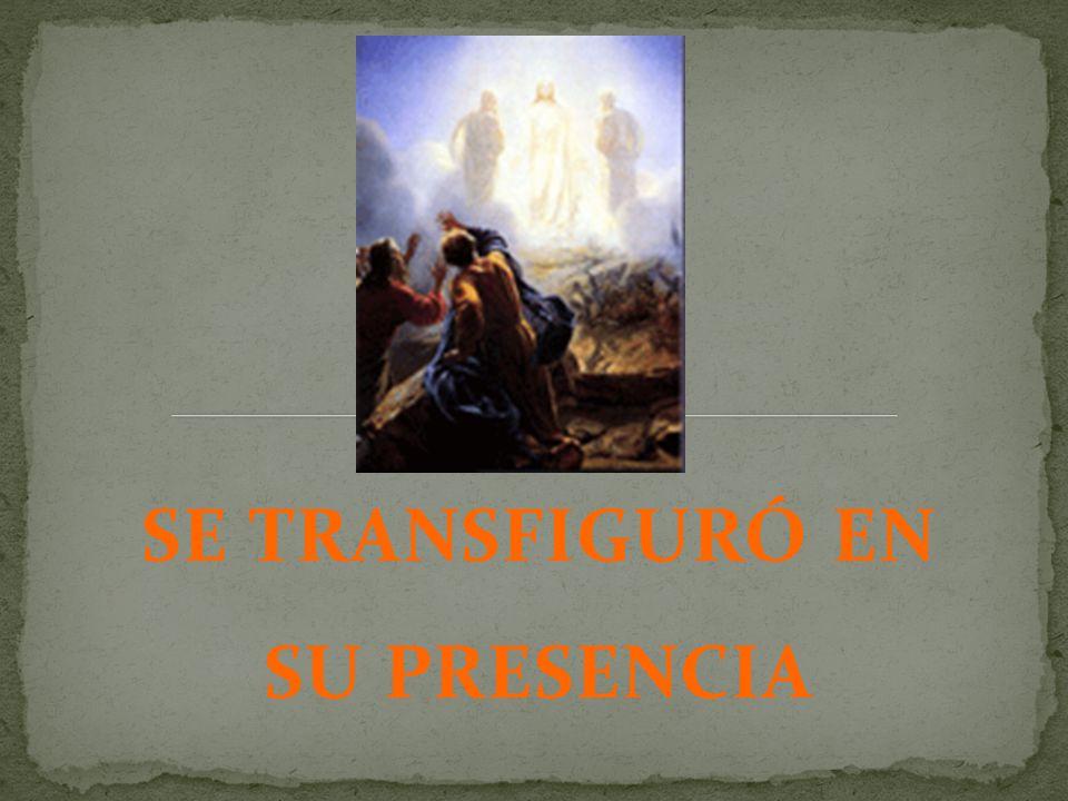 Los escogidos: Jesús selecciono a tres de los discípulos para que subieran con Él.