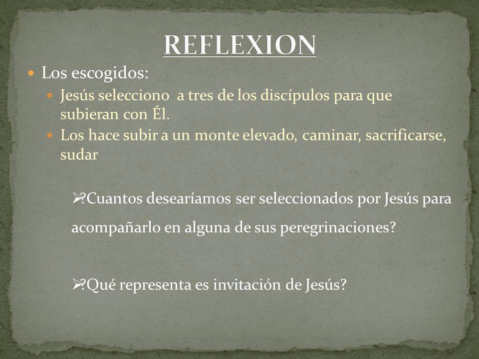 Transfiguración: Jesús se transfiguró en su presencia: su rostro se puso resplandeciente como la Luz del sol y sus vestiduras se volvieron blanca.