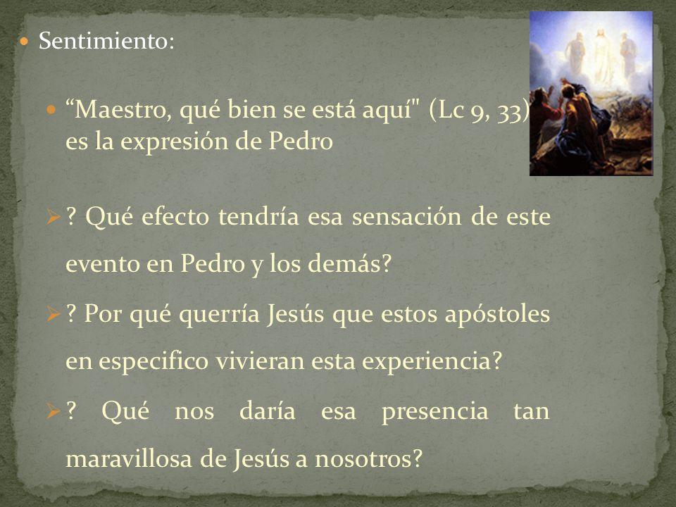 La Transfiguración de Jesús nos recuerda que en cualquier momento podemos ser escogidos para seguirle.