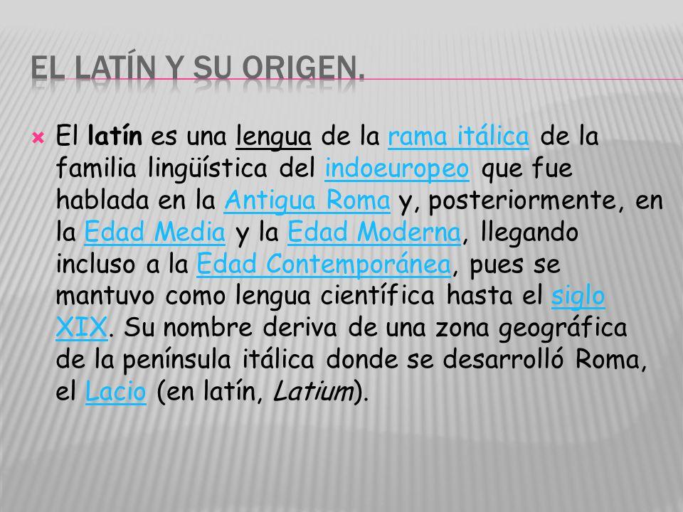El latín es una lengua de la rama itálica de la familia lingüística del indoeuropeo que fue hablada en la Antigua Roma y, posteriormente, en la Edad Media y la Edad Moderna, llegando incluso a la Edad Contemporánea, pues se mantuvo como lengua científica hasta el siglo XIX.