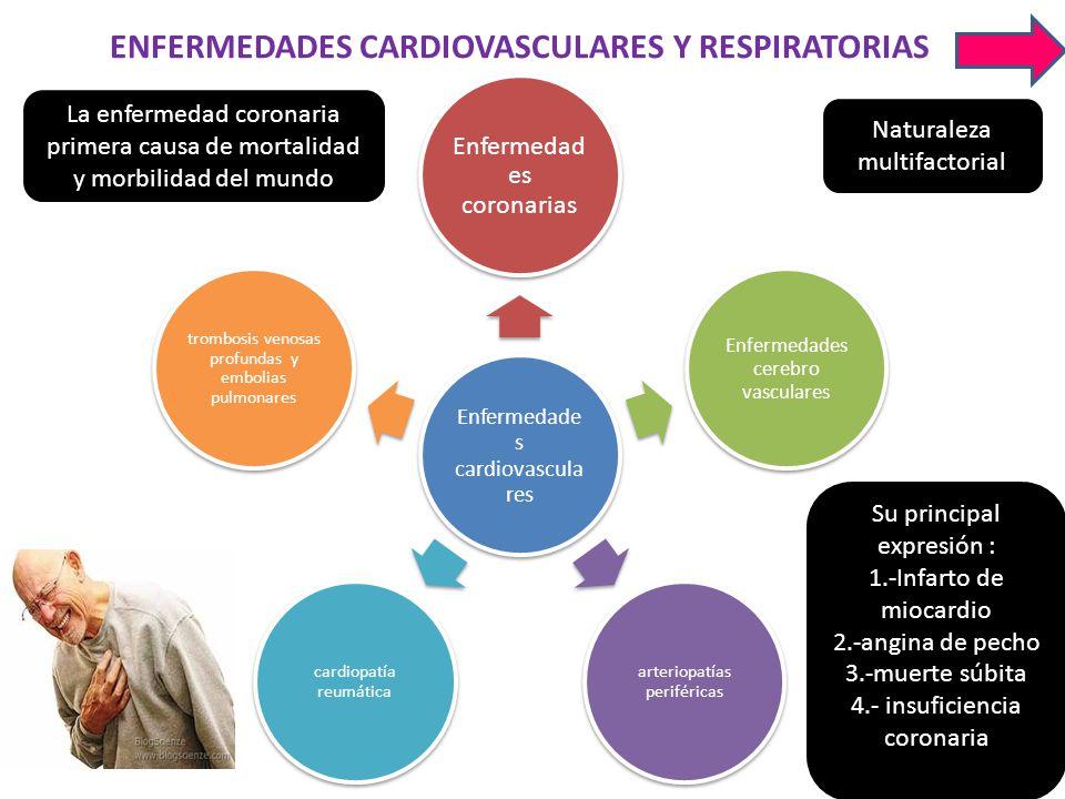 ENFERMEDADES CARDIOVASCULARES Y RESPIRATORIAS Enfermedade s cardiovascula res Enfermedad es coronarias Enfermedades cerebro vasculares arteriopatías p