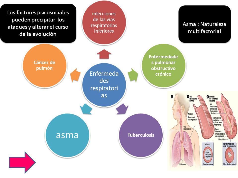 Enfermeda des respiratori as infecciones de las vías respiratorias inferiores Enfermedade s pulmonar obstructivo crónico Tuberculosis asma Cáncer de p