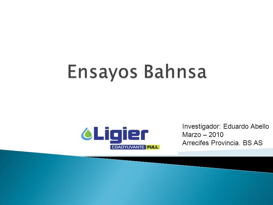 Investigador: Eduardo Abello Marzo – 2010 Arrecifes Provincia. BS AS