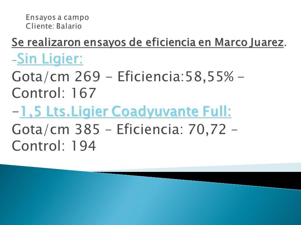 Se realizaron ensayos de eficiencia en Marco Juarez Se realizaron ensayos de eficiencia en Marco Juarez. - Sin Ligier: Gota/cm 269 - Eficiencia:58,55%