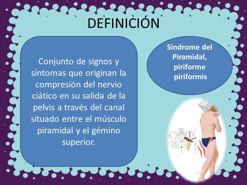 DEFINICIÓN Conjunto de signos y síntomas que originan la compresión del nervio ciático en su salida de la pelvis a través del canal situado entre el m