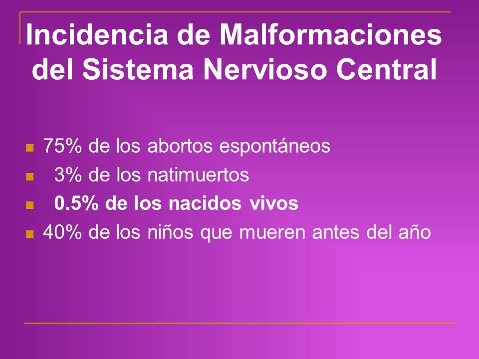 Incidencia de Malformaciones del Sistema Nervioso Central 75% de los abortos espontáneos 3% de los natimuertos 0.5% de los nacidos vivos 40% de los ni