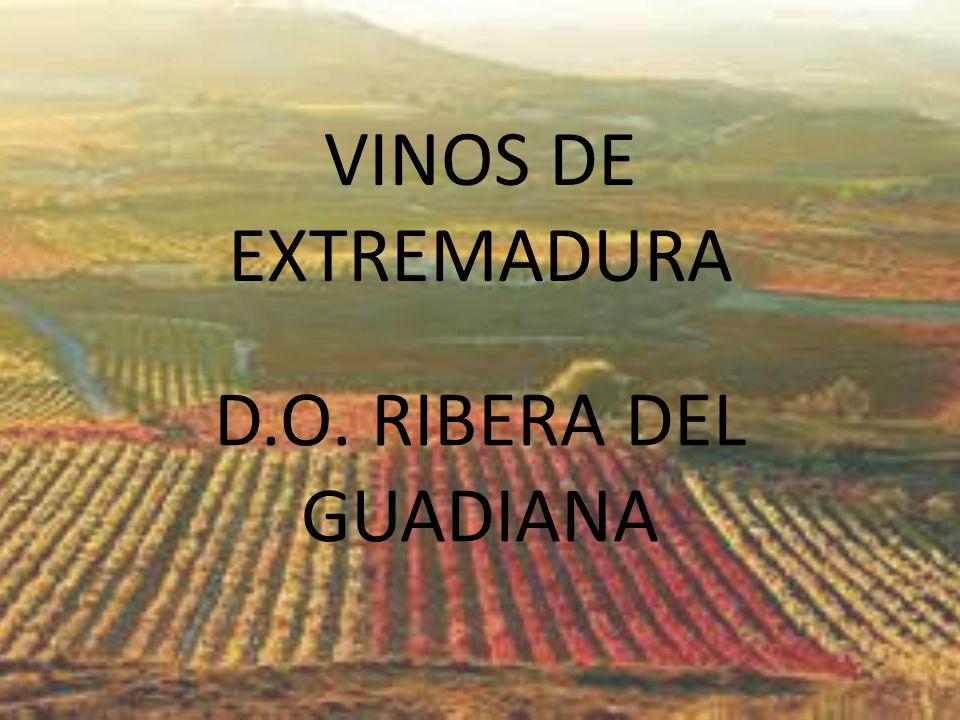 D.O. RIBERA DEL GUADIANA VINOS DE EXTREMADURA