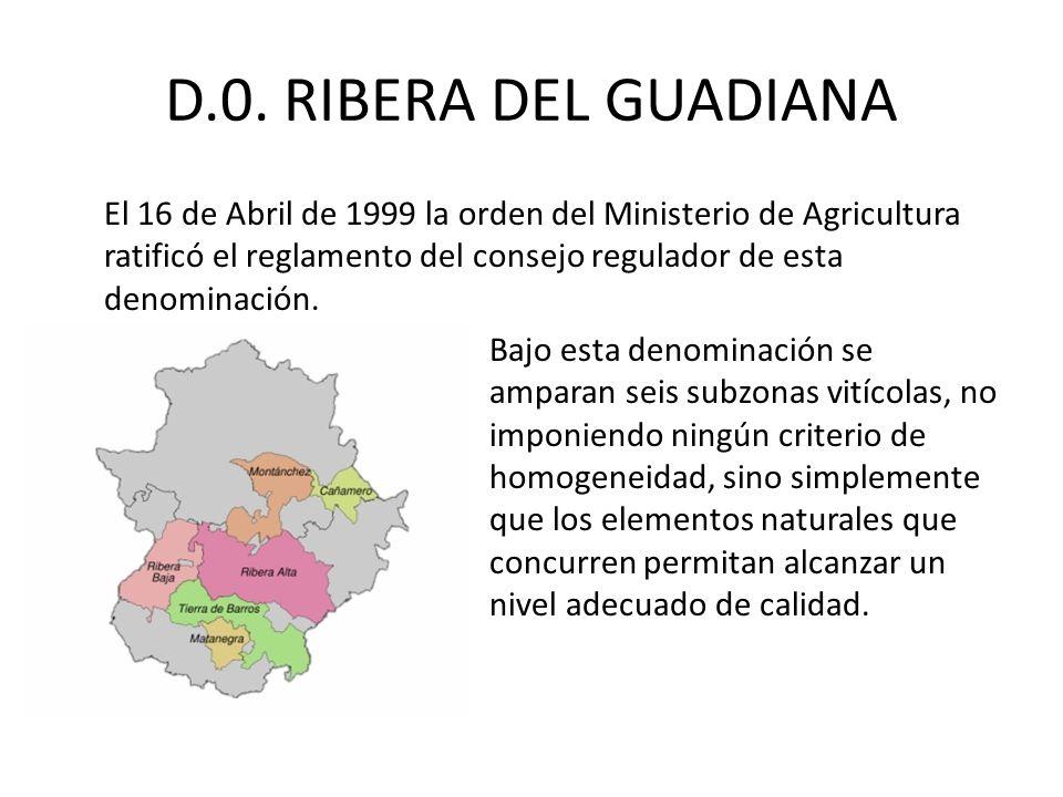 D.0. RIBERA DEL GUADIANA El 16 de Abril de 1999 la orden del Ministerio de Agricultura ratificó el reglamento del consejo regulador de esta denominaci