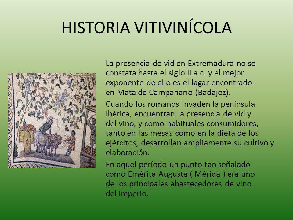 HISTORIA VITIVINÍCOLA La presencia de vid en Extremadura no se constata hasta el siglo II a.c. y el mejor exponente de ello es el lagar encontrado en