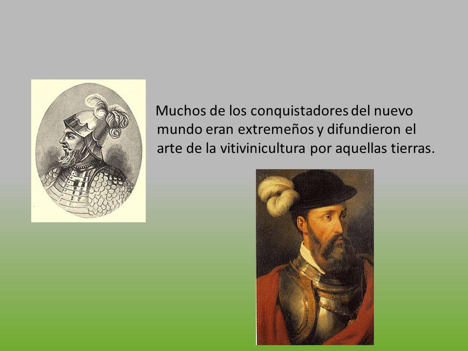 Entre estos cabe destacar a Hernán Cortes, empeñado en la obtención de vino para la celebración de las misas y la dieta de los ejércitos, primero a partir de las vides silvestres americanas y después a partir de las que el traía de Extremadura, al ver que estas se le morían decidió injertar las vides Americanas con las Extremeñas.