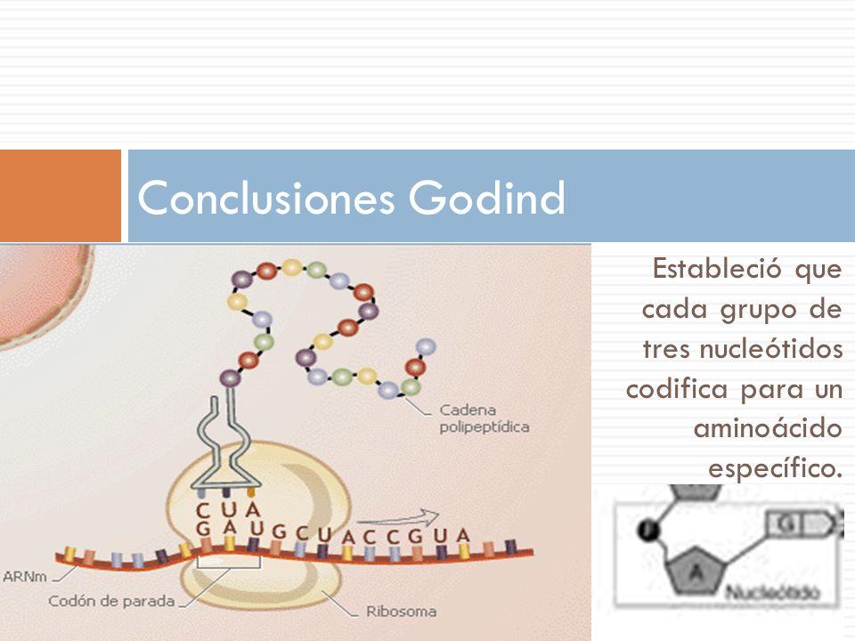 Estableció que cada grupo de tres nucleótidos codifica para un aminoácido específico.