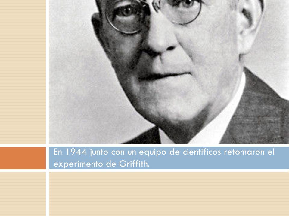 Experimento de Griffith Aisló dos cepas de bacterias de la misma especie.