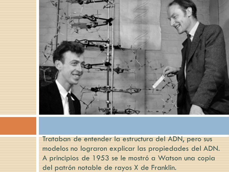 Trataban de entender la estructura del ADN, pero sus modelos no lograron explicar las propiedades del ADN.