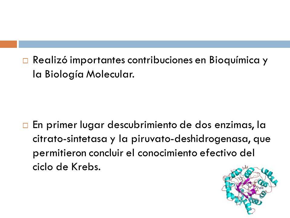 Realizó importantes contribuciones en Bioquímica y la Biología Molecular.