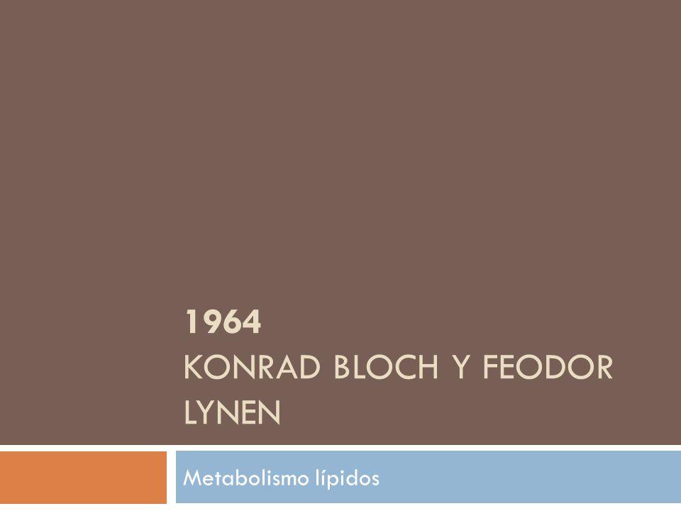 1964 KONRAD BLOCH Y FEODOR LYNEN Metabolismo lípidos