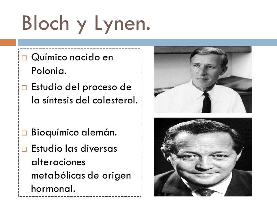 Bloch y Lynen.Químico nacido en Polonia. Estudio del proceso de la síntesis del colesterol.