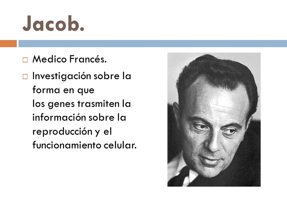 Jacob.Medico Francés.