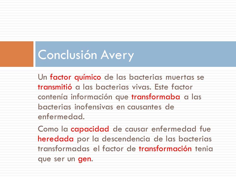 Un factor químico de las bacterias muertas se transmitió a las bacterias vivas.