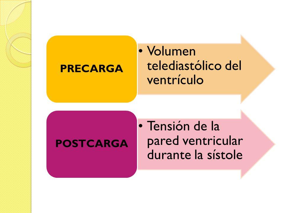 . Volumen telediastólico del ventrículo PRECARGA Tensión de la pared ventricular durante la sístole POSTCARGA