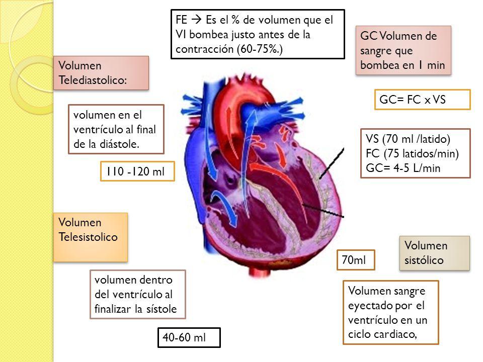 Volumen Telediastolico: Volumen Telesistolico volumen en el ventrículo al final de la diástole. 110 -120 ml volumen dentro del ventrículo al finalizar