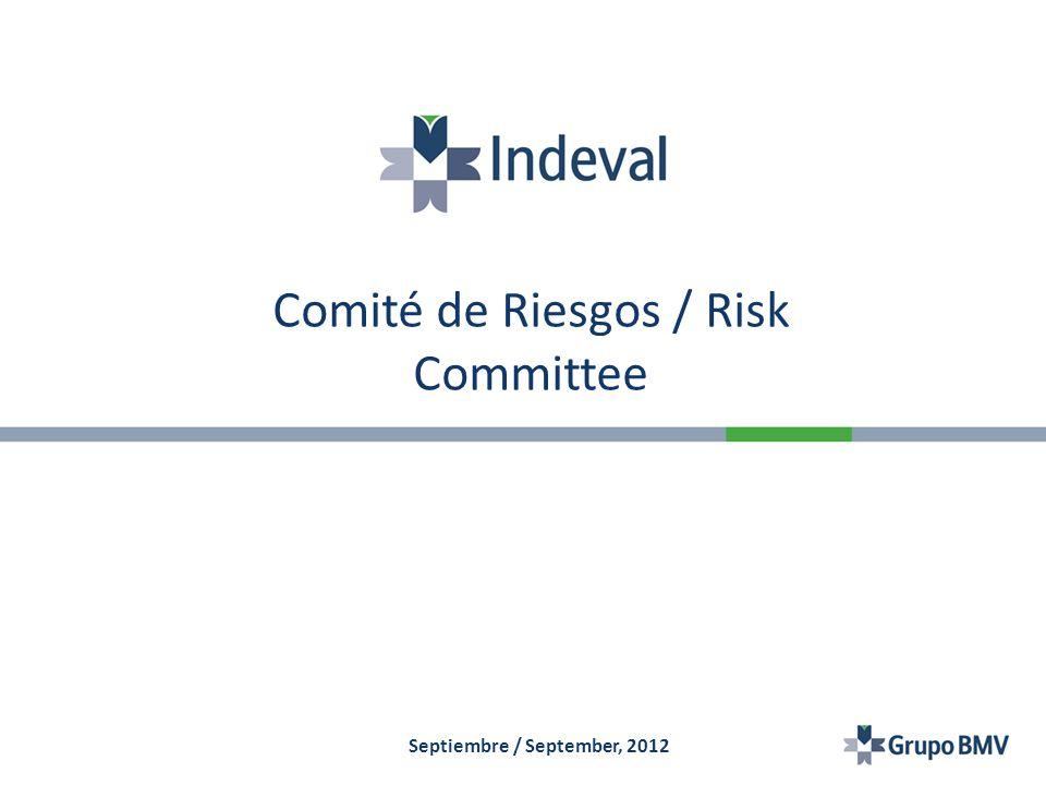 Comité de Riesgos / Risk Committee Septiembre / September, 2012