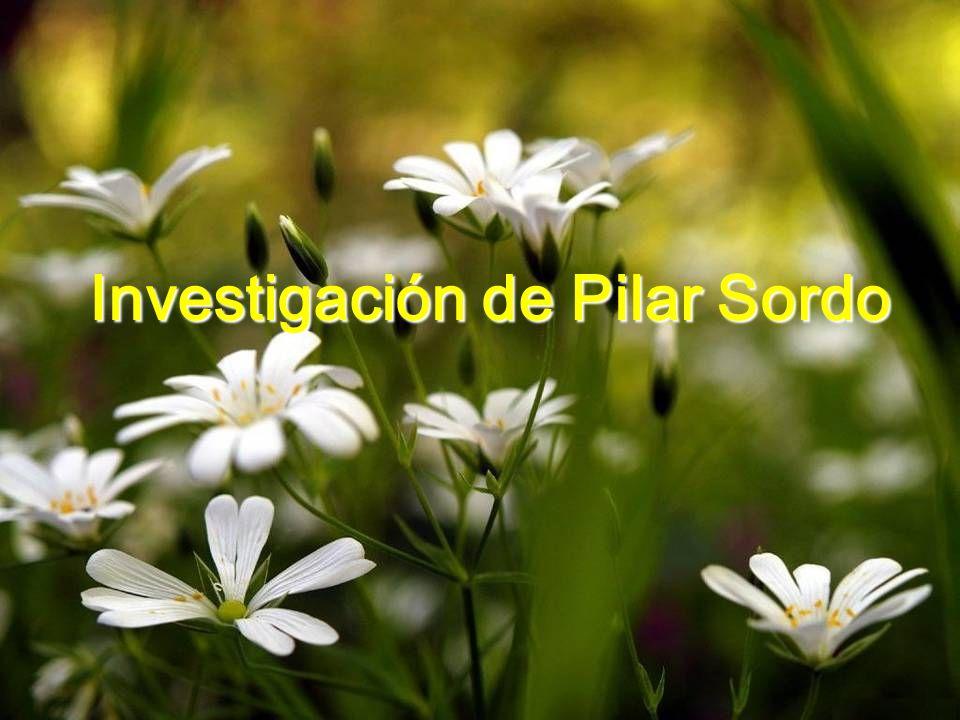 María del Pilar Sordo Martínez Psicóloga Universidad Diego Portales Especialización: Psicología Femenina asociada a infertilidad Trastornos de Aliment