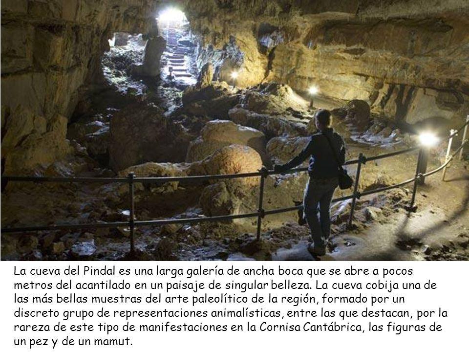 Cueva del Pindal (Pimiango,Ribadedeva)