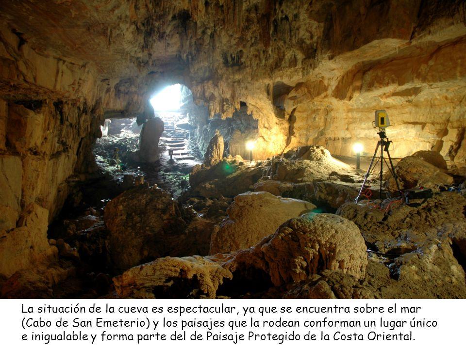 La cueva del Pindal es una larga galería de ancha boca que se abre a pocos metros del acantilado en un paisaje de singular belleza. La cueva cobija un