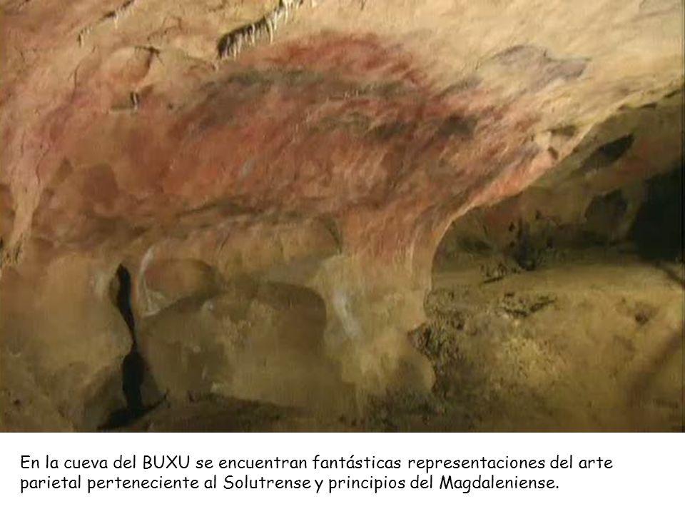 Cueva del BUXU (Cangas de Onís).