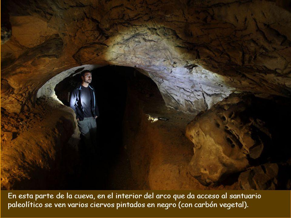 En la cueva del BUXU se encuentran fantásticas representaciones del arte parietal perteneciente al Solutrense y principios del Magdaleniense..
