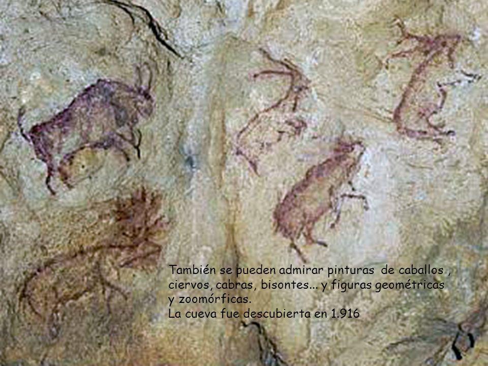 En el interior del camarín de El Buxu se ven un gamo y un ciervo pintado y grabado.
