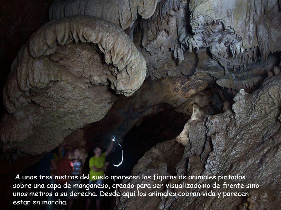 en 1908. Cueva de La Loja (El Mazo, Peñamellera Baja) Descubierta en 1908.