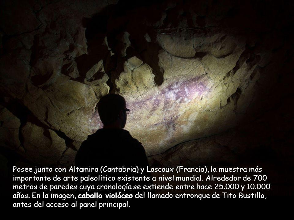 Fue descubierta en 1968 por espeleólogos del Grupo Torreblanca, toma el nombre de uno de los integrantes de este grupo fallecido poco después del desc