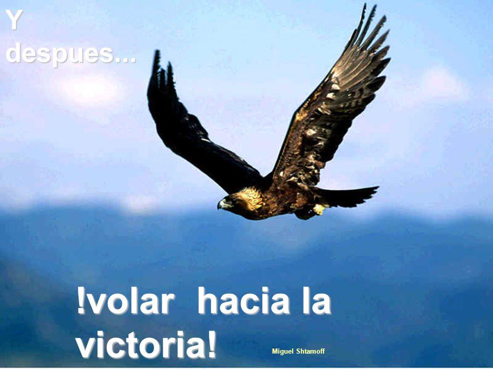 Y despues... !volar hacia la victoria! Miguel Shtamoff