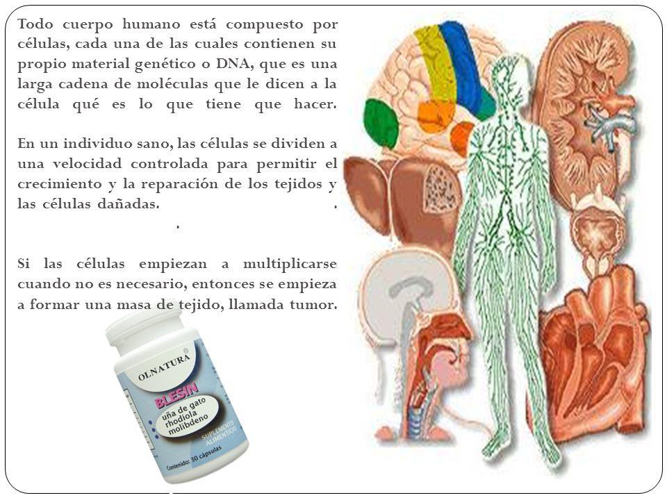 Todo cuerpo humano está compuesto por células, cada una de las cuales contienen su propio material genético o DNA, que es una larga cadena de molécula