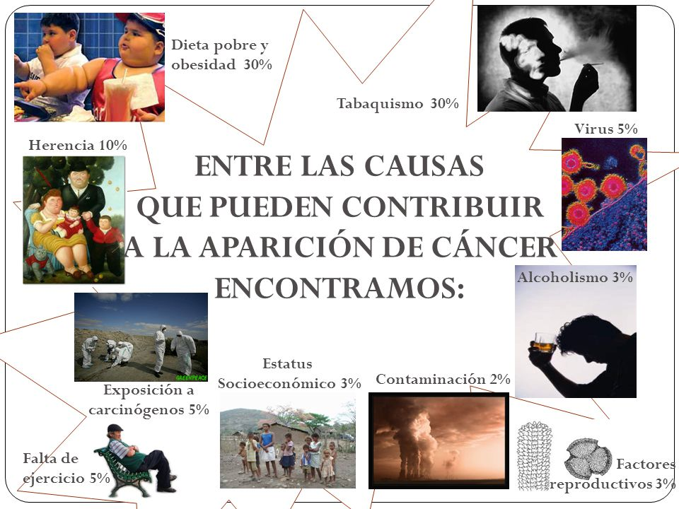 Dieta pobre y obesidad 30% Herencia 10% Exposición a carcinógenos 5% Falta de ejercicio 5% Alcoholismo 3% Factores reproductivos 3% Estatus Socioeconó