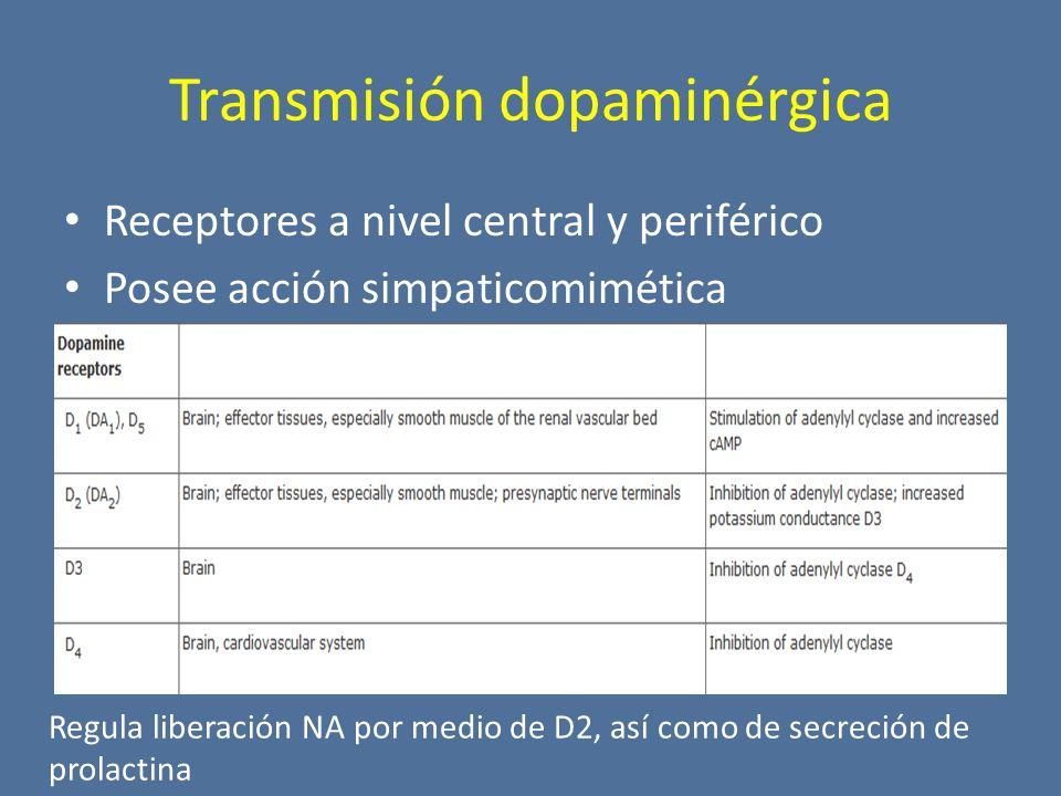Transmisión dopaminérgica Receptores a nivel central y periférico Posee acción simpaticomimética Regula liberación NA por medio de D2, así como de secreción de prolactina