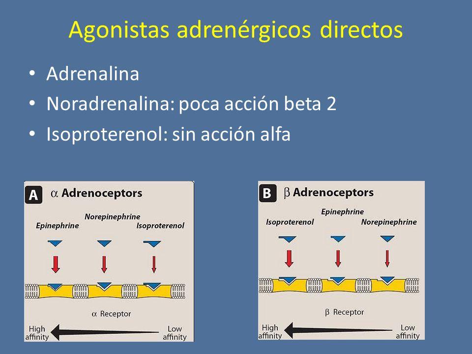 Agonistas adrenérgicos directos Adrenalina Noradrenalina: poca acción beta 2 Isoproterenol: sin acción alfa