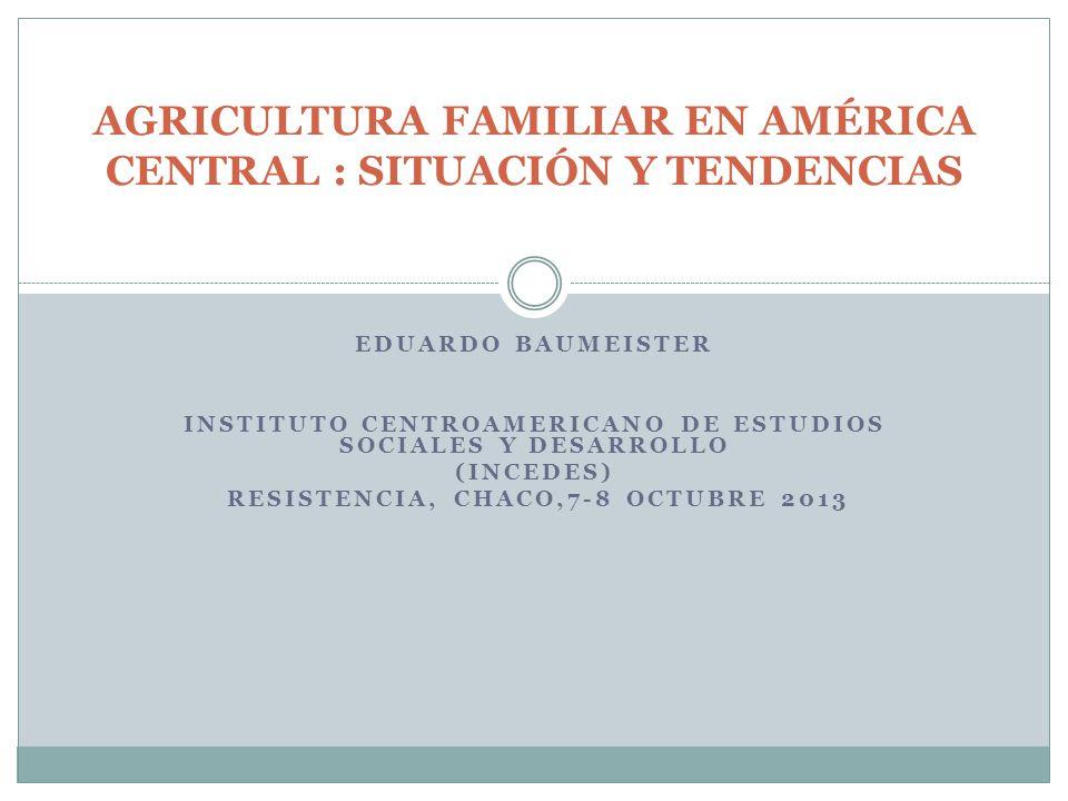 EDUARDO BAUMEISTER INSTITUTO CENTROAMERICANO DE ESTUDIOS SOCIALES Y DESARROLLO (INCEDES) RESISTENCIA, CHACO,7-8 OCTUBRE 2013 AGRICULTURA FAMILIAR EN A