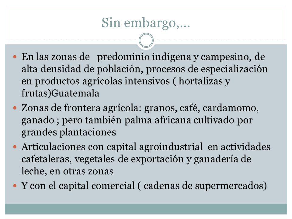 Sin embargo,… En las zonas de predominio indígena y campesino, de alta densidad de población, procesos de especialización en productos agrícolas inten