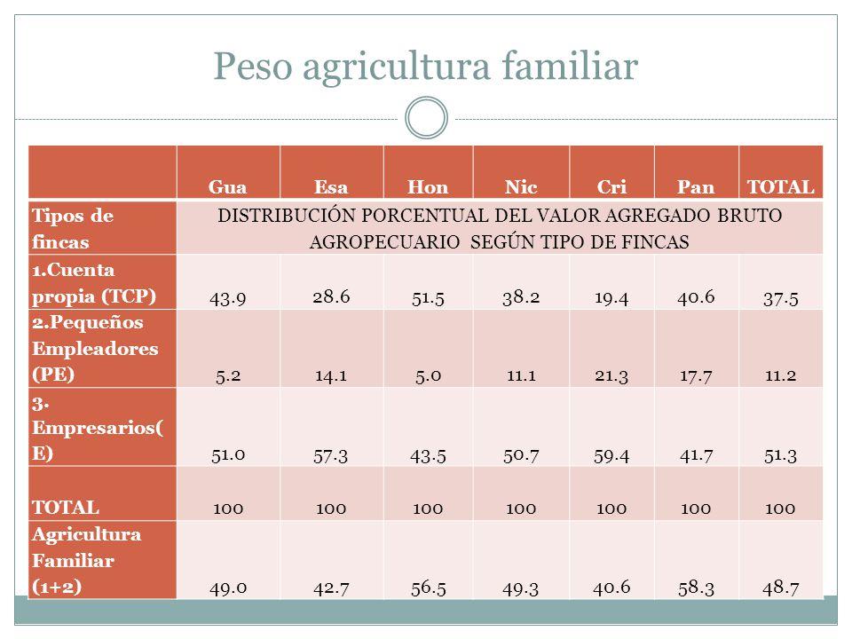 Peso agricultura familiar GuaEsaHonNicCriPanTOTAL Tipos de fincas DISTRIBUCIÓN PORCENTUAL DEL VALOR AGREGADO BRUTO AGROPECUARIO SEGÚN TIPO DE FINCAS 1