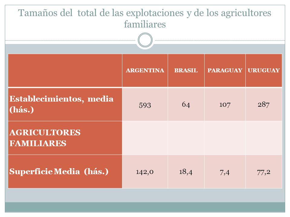 Tamaños del total de las explotaciones y de los agricultores familiares ARGENTINABRASILPARAGUAYURUGUAY Establecimientos, media (hás.) 59364107287 AGRI