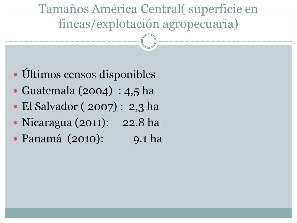 Tamaños América Central( superficie en fincas/explotación agropecuaria) Últimos censos disponibles Guatemala (2004) : 4,5 ha El Salvador ( 2007) : 2,3