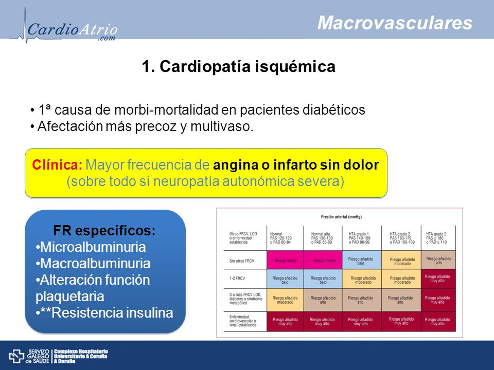 Macrovasculares 1.