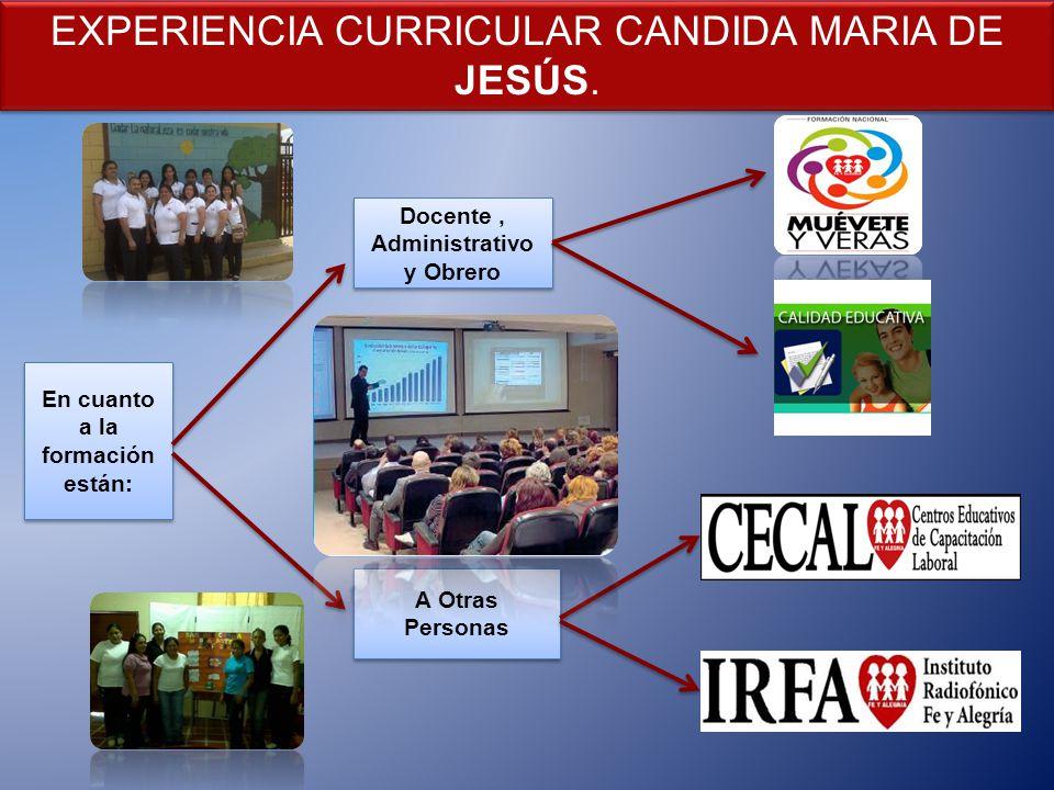 En cuanto a la formación están: Docente, Administrativo y Obrero A Otras Personas A Otras Personas