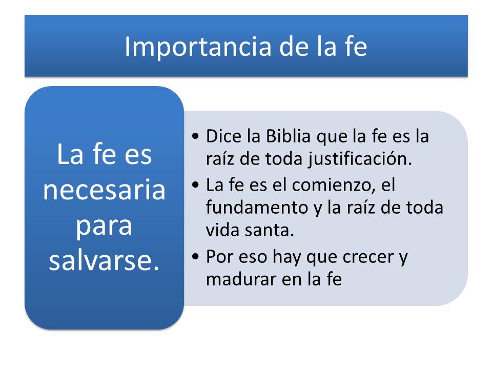 Importancia de la fe Dice la Biblia que la fe es la raíz de toda justificación. La fe es el comienzo, el fundamento y la raíz de toda vida santa. Por