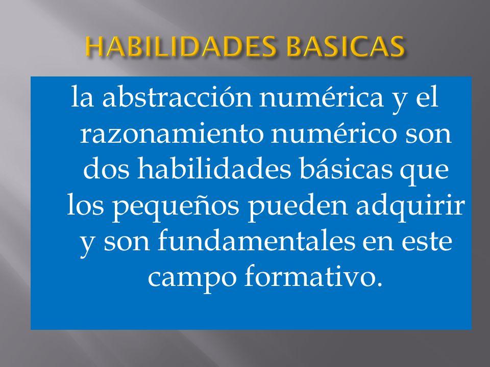 la abstracción numérica y el razonamiento numérico son dos habilidades básicas que los pequeños pueden adquirir y son fundamentales en este campo form