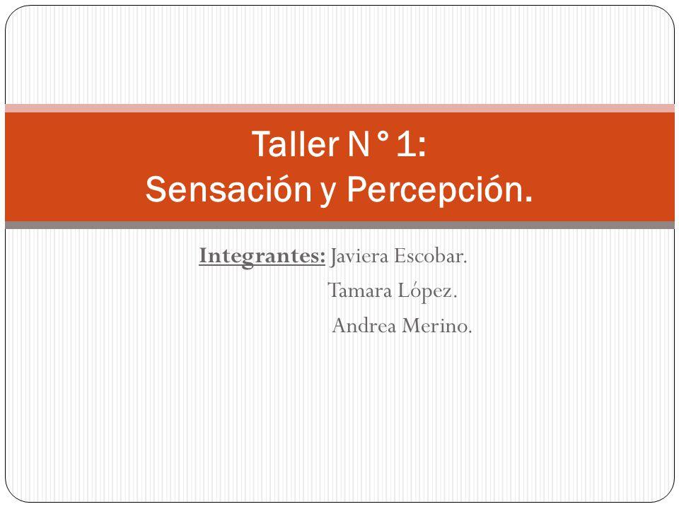 Integrantes: Javiera Escobar. Tamara López. Andrea Merino. Taller N°1: Sensación y Percepción.